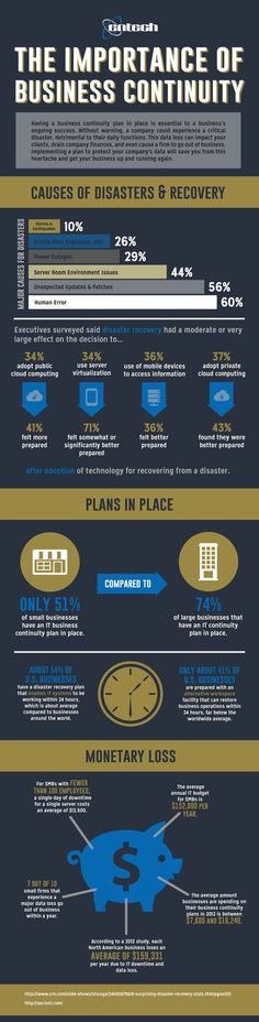 Develop A Business Continuity Plan Infographic  It Infographics
