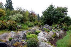 aménagement jardin de rocaille avec de grandes pierres et arbres