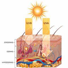 Medidas preventivas del cáncer de piel - http://plenilunia.com/cancer/medidas-preventivas-del-cancer-de-piel/34172/