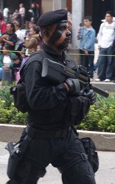 Cuerpo de Fuerzas Especiales