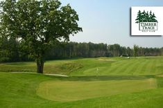 $25 for 18 Holes with Cart and Range Balls at Timber Trace #Golf Club in Pinckney ($55 Value. Expires May 15, 2016.)  Click here for more info: https://www.groupgolfer.com/redirect.php?link=1sqvpK3PxYtkZGdlbn2l