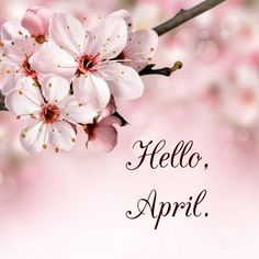 """126 Likes, 2 Comments - Coste Events Inc & Venue (@coste_events) on Instagram: """"Hello April Hola Abril #helloapril #spring #abril #aprilfool"""""""