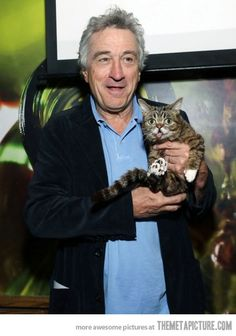 Just Robert DeNiro's cat,