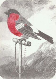 Postkort mot EEC. Lenket dompap. Folkebev. Sign. Kai Bru -71.