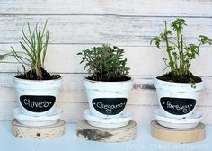 DIY Chalkboard Herb Pots! So easy and inexpensive! designdininganddiapers.com