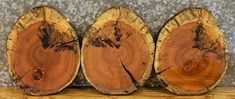 $54.95  - 3 Salvaged Live Edge Round Cut Spalted Maple Centerpiece Slabs 146671471614731 T 1D 12 12  146671471614731 >>> Click image for more details. (This is an affiliate link) #BuildingSupplies
