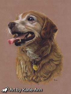 Pet portraits from photos. Beautiful recreations of your beloved pets from your favourite photos. Free worldwide delivery.