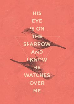 The Ministry of Watching Sparrows Fall to the Ground [D.L. Mayfield]
