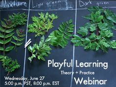 A fun learning experience for grown-ups! Playful Learning: Theory + Practice Webinar
