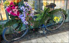 Spring Bike Makeover