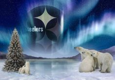 even the polar bears love The Steelers