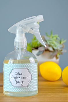 Homemade Odor Neutralizer Spray - Great for pet odors, dirty diaper odors, musty smells and any odor you need to neutralize. This spray absorbs odors naturally!