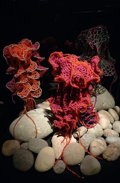 Beaded hyperbolic jellyfish by Vonda N. McIntyre. McIntyre is the author many classic works of feminist science fiction, and the The Sun and the Moon, a fantasy about a friendship between a courtier of Louis XIV and a sea monster. The book has recently been made into a major feature film, set for release in 2015.