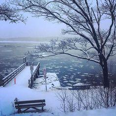 Another snowy day on the island #mainemorningrun #january #lovemaine #running #islandlife #snow