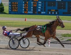 "HAMBURG, N.Y. --- ""She's back!"" Those were the first two words out of the mouth of a relieved harness racing driver Jim Morrill Jr. afte&hellip"