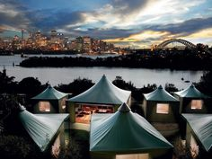 Roar & Snore! Taronga Zoo, Sydney