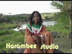 Oromo music, culture and love for homeland, Oromia, East Africa  https://www.youtube.com/watch?v=0osS8XOUg1o