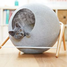 Designer Debuts Line Of Functional And Elegant Cat Cocoons   Three Million  Dogs