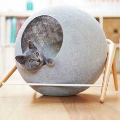 accessoires déco chat