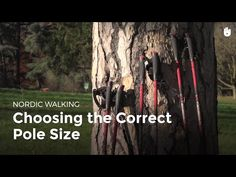 In this video, learn how to choose the correct pole size and make sure they are at the correct height. For more information on Nordic Walking poles, take a l. Exercise For Bad Back, Health And Wellness, Health Fitness, Walking Poles, Nordic Walking, Decathlon, Music Tv, Cross Training, Cape Town