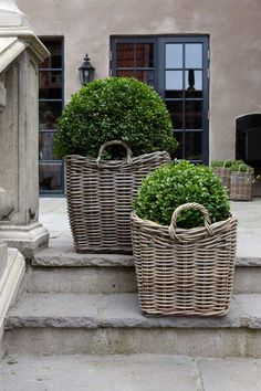 Grey rattan baskets with boxwood topiary balls. Belgian style exterior