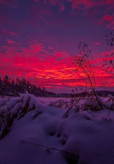 Twilight (Photo by Antti Viitakangas)