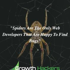 """""""Spiders Are The Only Web Developers That Are Happy To Find Bugs"""""""