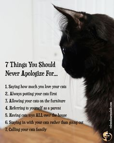 """Cat Care Kittens - """"Do you agree? Crazy Cat Lady, Crazy Cats, I Love Cats, Cool Cats, Love You, Gato Grande, Cat People, Cat Facts, Cat Toys"""