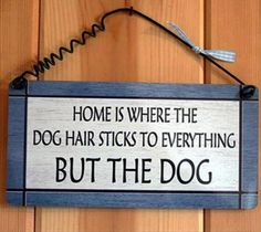 Dog Hair - Dump A Day Funny Pictures Of The Day - 54 Pics