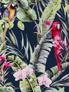 This beautiful Pretty Polly Wallpaper will bring a touch of glamour and style to any room. The design features colourful exotic parrots in bright vibrant tones, set amongst tropical foliage and palm leaves in shades of green with pretty pink flowers on a deep navy blue background. Easy to apply, this high quality paper has a lightly textured matte finish and would look great when used to create a stunning feature wall or running throughout an entire room. Parrot Wallpaper, Paradise Wallpaper, Tropical Wallpaper, Paper Wallpaper, Interior Ideas, Interior Decorating, Interior Design, Notebooks, Journals