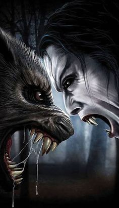 Are you a startup vampire or a werewolf? Dark Fantasy Art, Fantasy Wolf, Dark Art, Werewolf Vs Vampire, Art Vampire, Werewolf Art, Vampire Fangs, Fantasy Creatures, Mythical Creatures