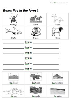 Animals and habitats - free printable | Science--an investigation ...
