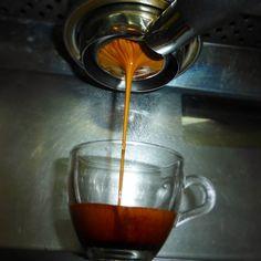 AROMA DI CAFFÈ  . La extracción en filtro desnudo nos permite maximizar el sabor y los aromas de nuestro grano #Arabica de #Boconó.  . El perfil de taza que disfrutarás es un café cuerpo medio baja astringencia suaves notas aromáticas maderadas y un leve sabor caramelizado. . Acompáñanos  disfrutar una experiencia sensorial en cada taza del mejor #Café. . @aromadicaffe @aromadicaffe @aromadicaffe…