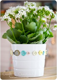 Craft & Creativity | Thread buttons onto wire, wrap around a pot plant.