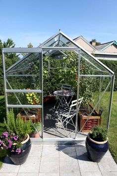 Deer Garden, Garden Plants, Greenhouse Gardening, Greenhouse Ideas, Backyard Projects, My Dream Home, Garden Landscaping, Homesteading, Outdoor Gardens
