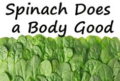 We love spinach! It's so nutritious, healthy, versatile, easy to cook, fun to grow, delicious…