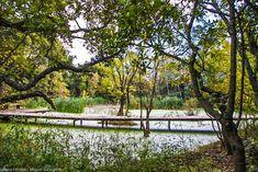 Coloco | Paysagistes / Urbanistes / Jardiniers | Trames vertes et bleues…