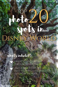 Top 20 Photo Spots in Disney World