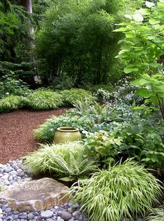 8 Marvelous Useful Ideas: Modern Backyard Garden Paths backyard garden ideas decks.Backyard Garden Ideas On A Budget backyard garden house planter boxes.Backyard Garden On A Budget Walkways. Shade Grass, Plants, Woodland Garden, Shade Garden, Gorgeous Gardens, Backyard Garden Landscape, Backyard Garden, Japanese Garden, Outdoor Gardens