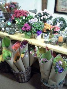 Plants for sale Plant Sale, Floral Design, Table Decorations, Plants, Home Decor, Decoration Home, Room Decor, Floral Patterns, Plant