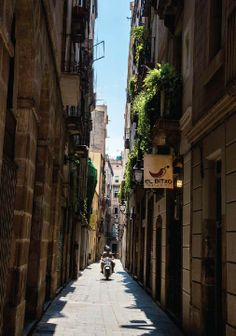 Wander throughout the streets of Barcelona, Spain this summer and discover the beautiful culture and cuisine!