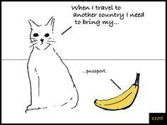 Cat and Banana episode 1105. http://www.facebook.com/catandbanana
