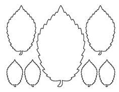 Elm Leaf Pattern