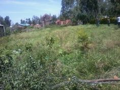 Riat plot for sale is a 0.04 acres PRIriat plot for saleME land set on a gentle slope of Riat Hills with a stunning view of Rift Valley's Nandi Hills and