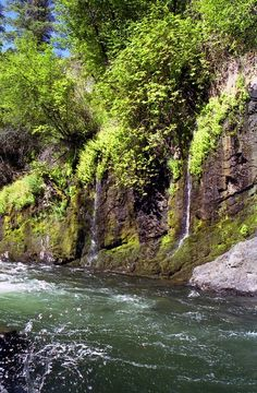 S. fork of Salmon R. Photo by Jay Hutchison -- National Geographic Your Shot