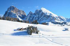 Sassolungo e Sassopiatto dall'Alpe di Siusi