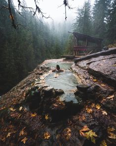 Art of Visuals - @braybraywoowoo back again with my third post for my AOV takeover! Deep in the Oregonian rainforest you can find these secret hot springs tucked away in the trees. This was one...