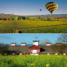 This Travel Tuesday we're in Napa Valley, California! http://kamasutra.com/blogs/makinglovebetter/13491525-kama-sutra-travel-tuesday-napa-valley #KamaSutra #MakingLoveBetter #Love #Romance #Intimacy #TravelTuesday #NapaValley #California