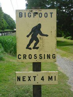 X-crossing. Skykomish, WA.
