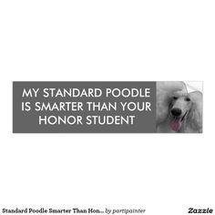 Standard Poodle Smarter Than Honor Student Car Bumper Sticker